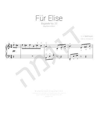 fur elise picture_0001