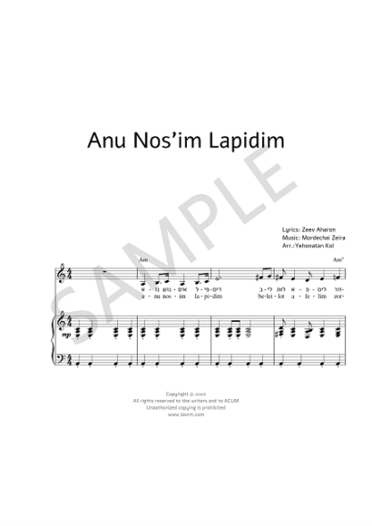 anu nosim lapidim sample_0001